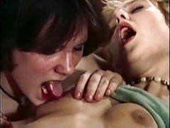 семејство приватно порно видео Зошто девојчињата